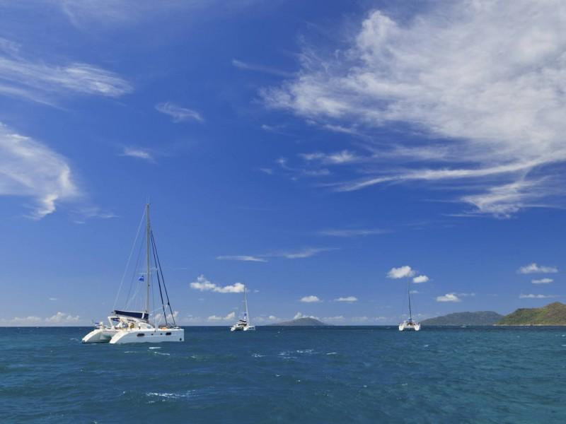 Renegade Fishing Charters - Whitsunday Holidays